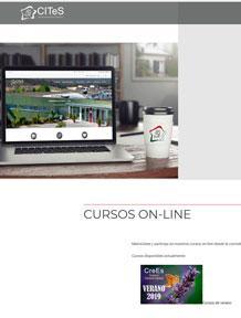 Diseño web cites